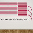 sub total trong bang pivot