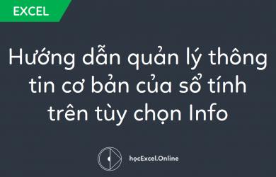 Hướng dẫn quản lý thông tin cơ bản của sổ tính trên tùy chọn Info