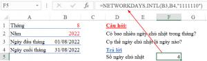 ham-networkdays.intl-xac-dinh-so-ngay-chu-nhat-trong-thang